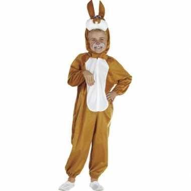 Bruin paashaas carnavalskleding baby online
