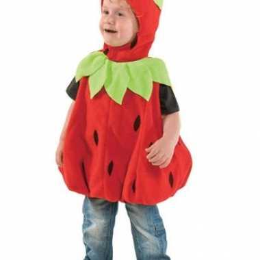 Carnavalskleding aardbeien pak kind online
