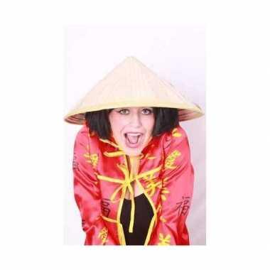 Carnavalskleding chinese stro hoeden online