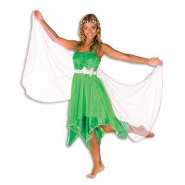 Carnavalskleding elfjes jurk groen dames online
