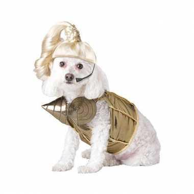 Carnavalskleding madonna honden online