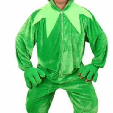 Kermit kikker carnavalskleding pluche online
